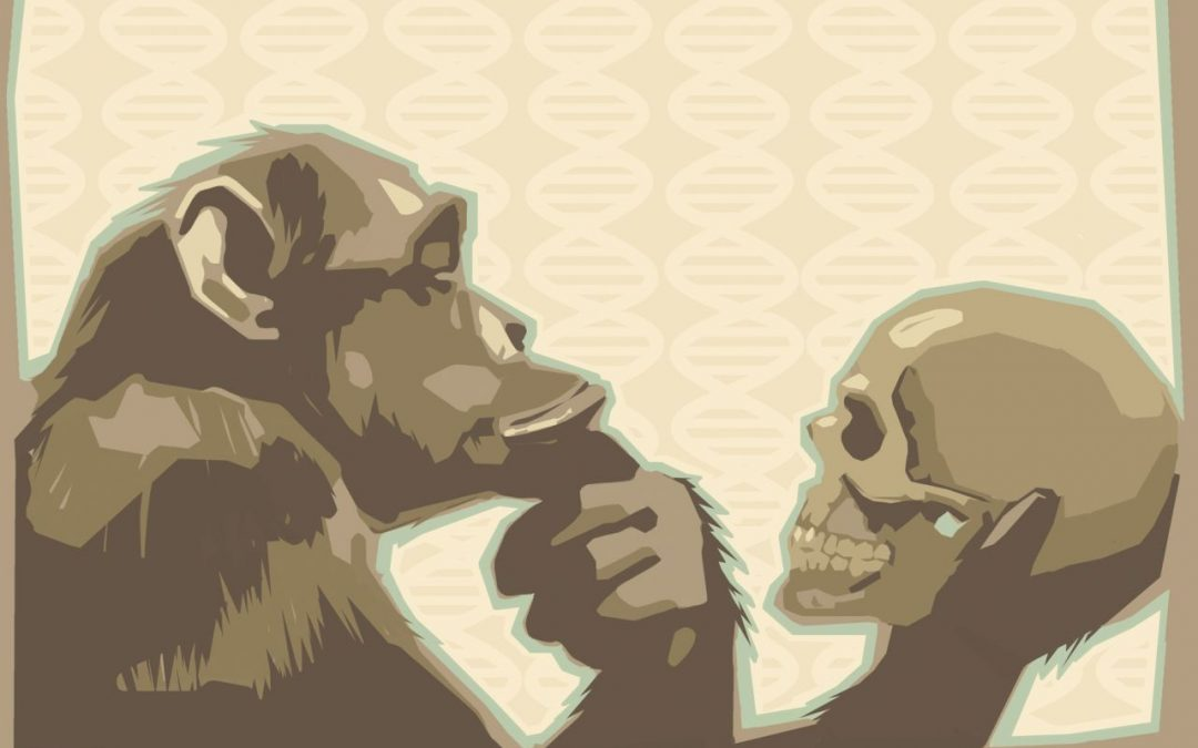 Why the Theory of Evolution is So-o Unscientific 4.8 (85)